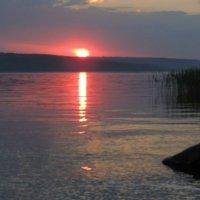 Красивый вечер :: Nastya. S