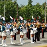 Торжественный парад :: Tatyana Belova