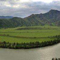 Долина реки Катунь :: Геннадий Ячменев