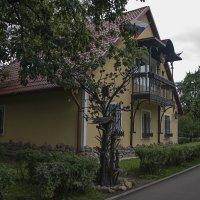 Дом с железными деревьями и птицами. :: Яков Реймер