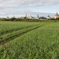 Полюшко-поле :: Анатолий Тимофеев