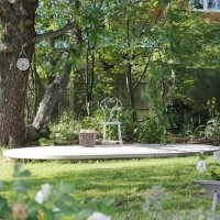 во саду... :: navalon M