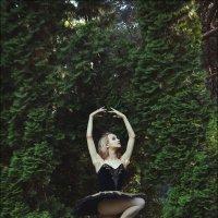 Летние сезоны в парке №7 :: Ирина Лепнёва