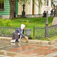 ...Накорми пташку,пожалей кошку... :: Виктор Евстратов