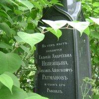 Великий род Непейцыных... :: Марина Домосилецкая