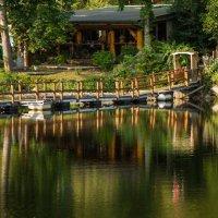 Там, где живет умиротворение :: Владимир Gorbunov