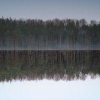 Всего лишь отражение... :: Мария Спивак