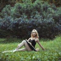 летние сезоны в парке №8 :: Ирина Лепнёва