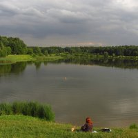Жизнь  на берегу пруда :: Андрей Лукьянов
