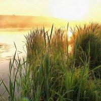 Рассвет на рыбалке :: gregory `