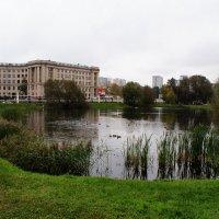 Круги на воде :: Николай Дони