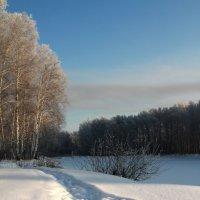 Мороз :: Александр Школьник