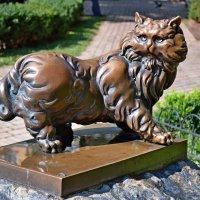 Памятник коту :: Ростислав