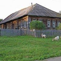 РУССКИЙ дом в деревне... (без приставки евро))) :: Владимир Хиль