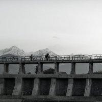 вечерняя прогулка :: Albina Mishel