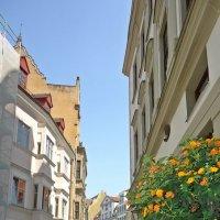 Улочки старого города :: Galina Dzubina