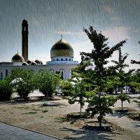 Дождь и солнце :: Анатолий Чикчирный