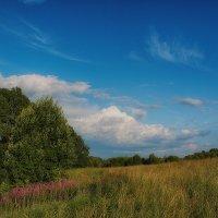 В поле :: Иван Анисимов