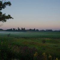 Утренний туман тихонько стелится над полем.... :: Ксения Довгопол