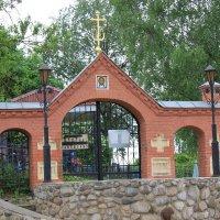 Вознесенское кладбище в г.Торопце :: Татьяна Латышева