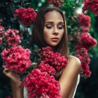 Flower :: Кирилл Аверьянов