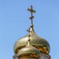 Купола собора в Пятигорске :: Николай Николенко