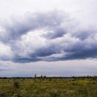 Облака 1 :: Владимир Сквирский