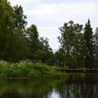 питерские пейзажи :: Olga Pavlova