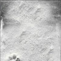 следы на снегу :: Ольга (Кошкотень) Медведева