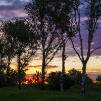 Рассвет по дороге в Шереметьево :: Фима Розенберг