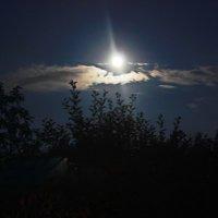 Ярко светит луна. :: Татьяна Кудрина