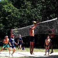 Пляжный волейбол. Фото №1 :: Владимир Бровко