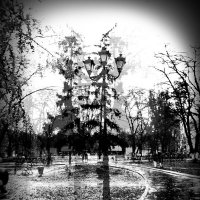 schizophrenia :: Таня Новикова
