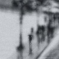 просто дождь :: Лара Leila