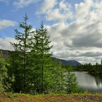 Тихое озеро... :: Витас Бенета
