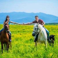конная прогулка :: Алёна Николаева
