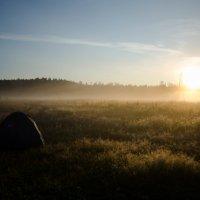 Утро :: Ром Weiser