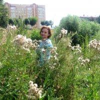 Заблудилась среди трав :: Елена Семигина