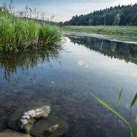 на Москве-реке :: Лариса Батурова