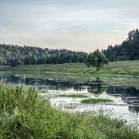 вечерняя Москва-река :: Лариса Батурова