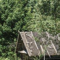 Покинутый дом :: Victory Kryuchkova