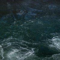 взгляд духа горной реки :: Svetlana AS