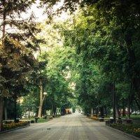 Пушкинский бульвар на рассвете :: Сергей Шруба