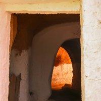 В Тунисе... :: Светлана Шишова
