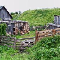 Русский Север. Село Нёнокса. Задний дворик :: Владимир Шибинский
