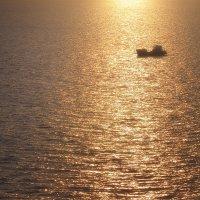 В янтарной тишине мгновения :: Антон Сологубов