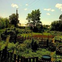 Полдень в огородах :: Милла Корн