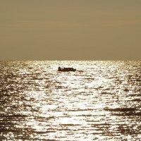 На вечерней зорьке по заливу за рыбкой. :: Владимир Гилясев