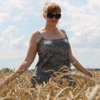 Поле с пшеницей :: Елена Чеснокова