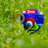 Приключения фотоаппаратика :: Лена Левина